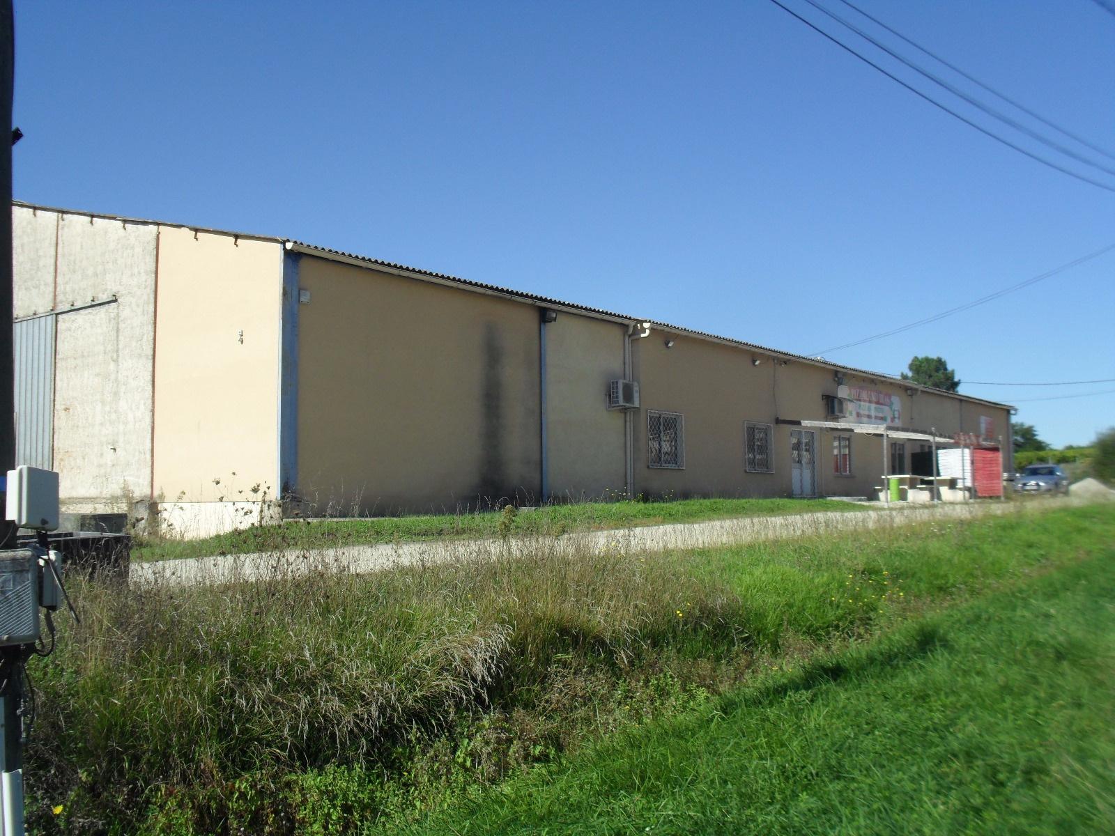 Vente Immobilier Professionnel Entrepôt Landiras (33720)